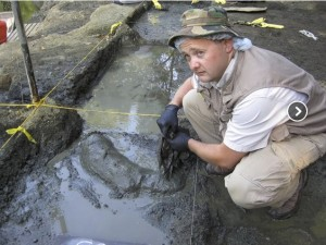 In the image to the left, a student from the 2009 class uncovers the tusk socket and partial tusk of a mammoth. After getting over his shock of the discovery, he did a brilliant job of excavating the specimen.
